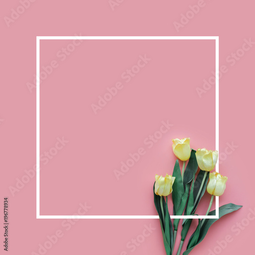 Foto op Aluminium Tulp Summer concept with white tulip on colorful background