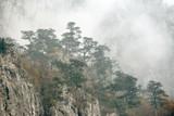 Fall landscape in Mehedinti Mountains, Romania, Europe - 196795761
