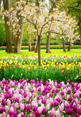 Panel Szklany Ogrody Formal spring garden