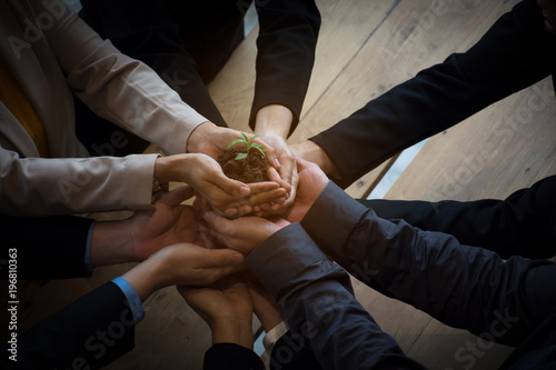 Stampa su Tela team hand holding plant for growth up business project start up new project concept worker partner smart team