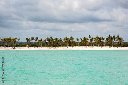 Photo Stands Island Beach in the Caribbean Sea with White Sand, Turquoise Water and Palm Trees, in Dominican Republic
