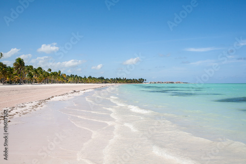 Tropical Beach with White Sand and Palm Trees, in Cap Cana,Dominican Republic