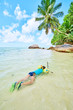a little boy with mask and snorkel in the water in tropical beac