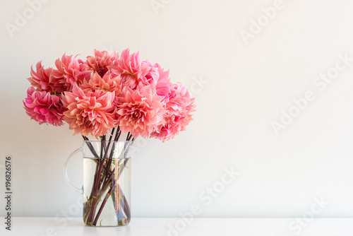 Close up of bright coral pink dahlias in glass jug on white shelf against neutral wall background with copy space (selective focus)