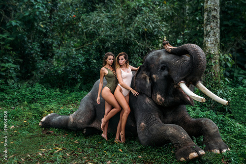 Fotografie, Obraz  two young girls with curly hairs hugging each other, elephant on background near forest