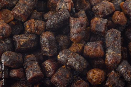 Fotografía  Bee Bread macro background texture