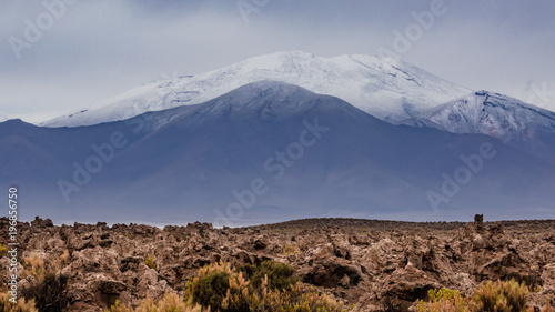 Foto op Aluminium Diepbruine Altiplano region Bolivia with snow covered volcano and petrified corals from time when the region was under sea level