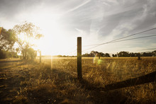 Sunset At A Farm In The Bush W...