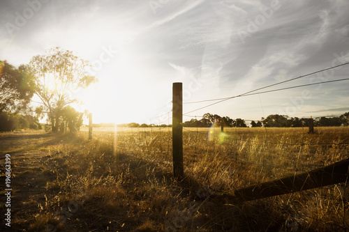 Foto  Sunset at a farm in the bush with long fence and flare, Grampians, Victoria, Aus