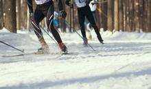 Ski Competition - Legs Of Spor...