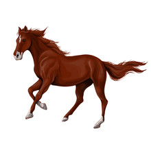 A Horse Stands, Fawn, Vector Illustration