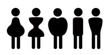 Different Body Shapes, Physiqu...