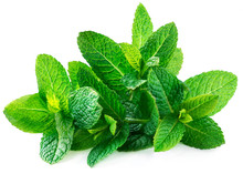 Fresh Spearmint Leaves Isolated On The White Background.