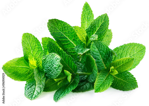 Poster Aromatische Fresh spearmint leaves isolated on the white background.