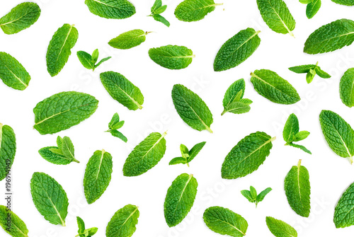 Fresh mint isolated on white.  Mint Pattern.