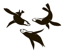 Collection Of Sea Seal Silhouettes