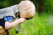 Leinwanddruck Bild - Charming kid exploring nature with magnifying glass