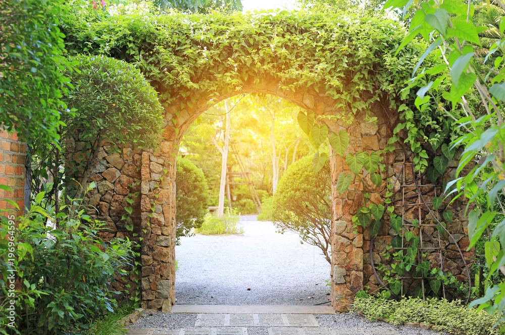 Fototapety, obrazy: Stone arch entrance gate covered with ivy. Archway to the park with sunlight.
