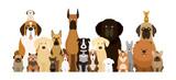Fototapeta Fototapety na ścianę do pokoju dziecięcego - Group of Dog Breeds Illustration, Various Size, Front View, Pet