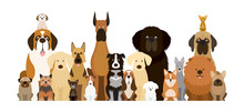 Group Of Dog Breeds Illustrati...