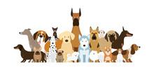 Group Of Dog Breeds Illustrati...