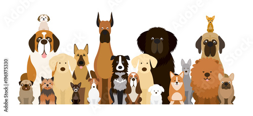 Canvas Print Group of Dog Breeds Illustration, Various Size, Front View, Pet