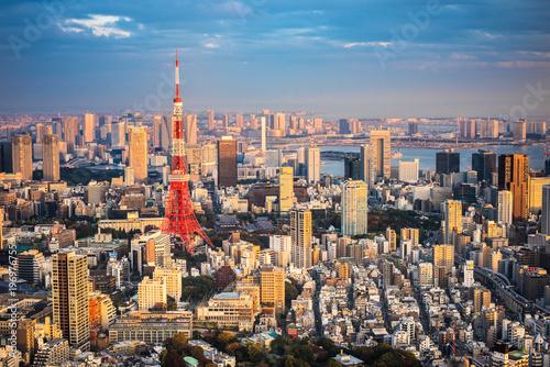 Spoed Foto op Canvas Tokio Tokyo aerial panoramic view