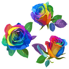Multicolored Roses On White Ba...