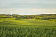 Warmiński krajobraz - Wiosna