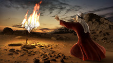 Moses And The Burning Bush. Story Of Book Of Exodus In Bible. The Shrub Was On Fire, But Was Not Consumed By The Flames.
