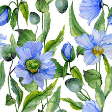 Beautiful Blue Poppy Flowers With Green Leaves On White Background. Seamless Floral Pattern. Watercolor Painting. Hand Painted Illustration.