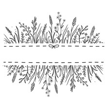 Hand Drawn Background With Wild Herbs Ad Flowers