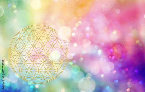Aus der Blume des Lebens erstrahlt regenbogenfarbenes Licht Canvas Print