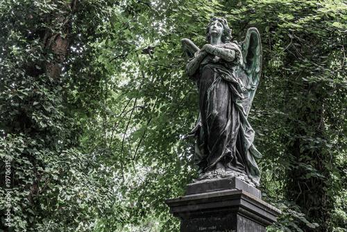 Photo sur Toile Cimetiere Engelstatue gedenkt der Toten im alten Südfriedhof von München