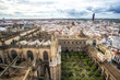 Seville cathedral and city view