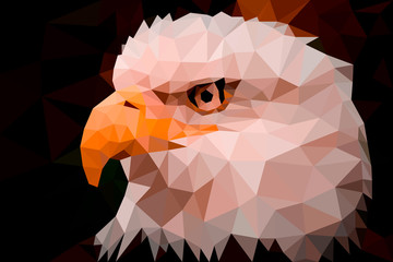 FototapetaLow poly design. Eagle triangles low poly art vector