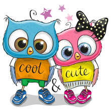 Two Cute Owls On A White Background