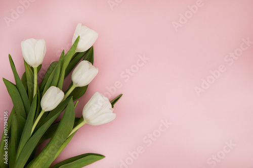 In de dag Tulp Tulip flowers postcard