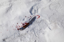 Bloodied Knife In The Snow