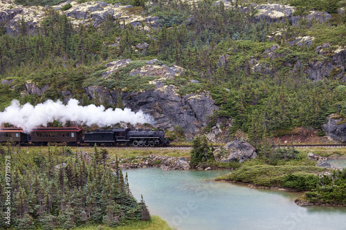 Fotografie, Obraz  Train heading to White Pass