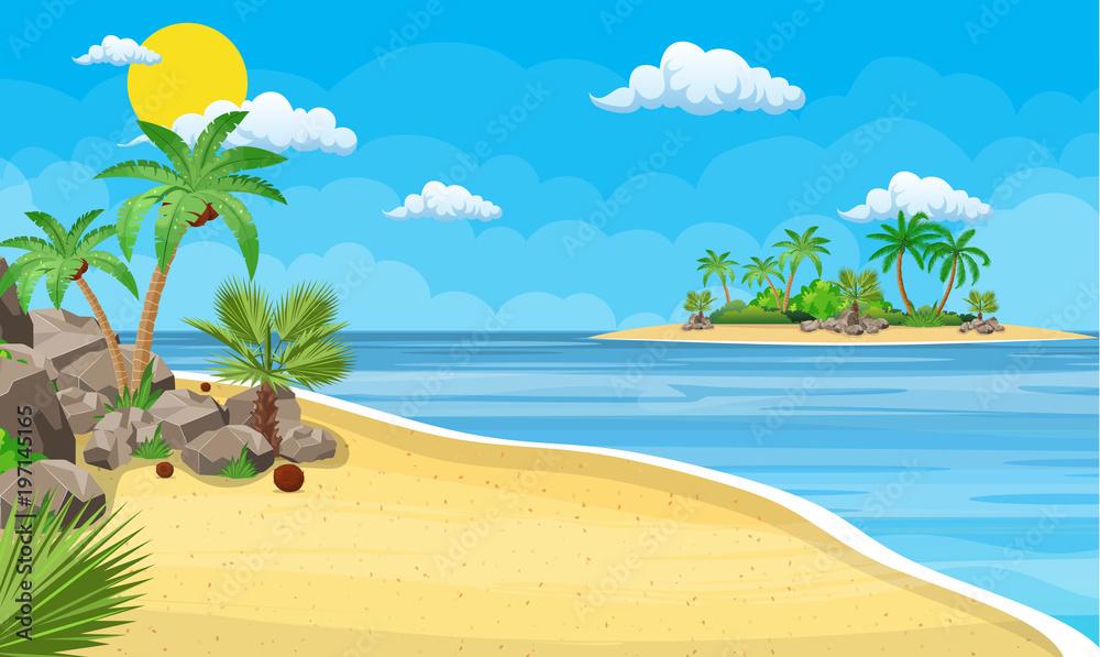 Fototapeta landscape of palm tree on beach.