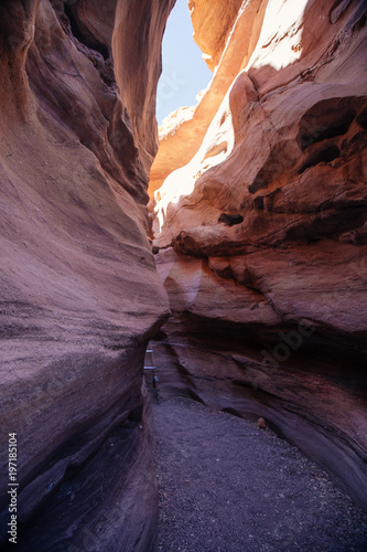 Canvas Print Red canyon  in the Israil and sun lights