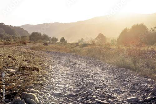 Fotografía The horizontal shot of stone dusty road in a dry valley on a background of bushes