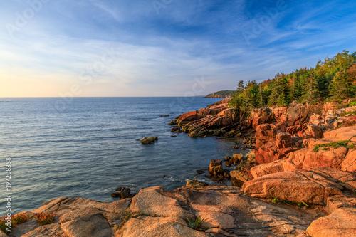 Fotografie, Obraz  Acadia Viewpoint