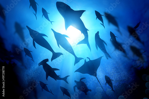 Photo A variety of marine and ocean life silhouettes under the waves including salt water Dolphins, sharks and fish