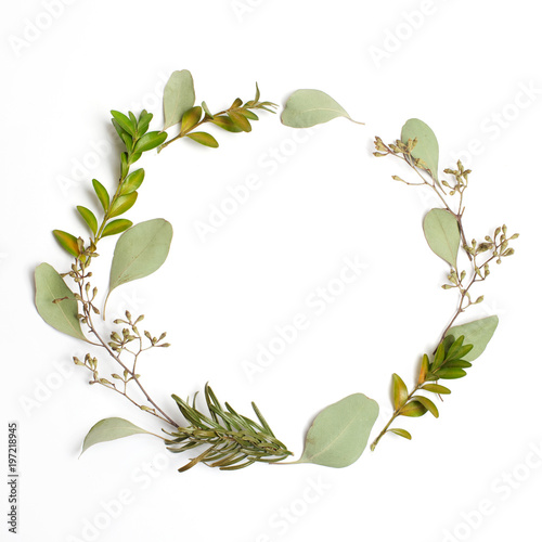 Fotobehang Bloemen Round circle frame made of green branches and leaves on white background. Flat lay, top view