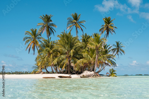 Staande foto Eiland Small Island, beach and palm trees - San Blas Islands, Panama