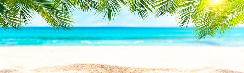 sandstrand, palmen, meer