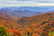Autumn Colors In Great Smoky M...
