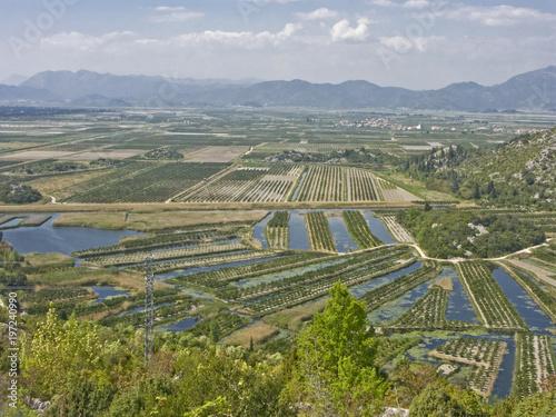 Landwirtschaft im Neretvadelta Fototapet